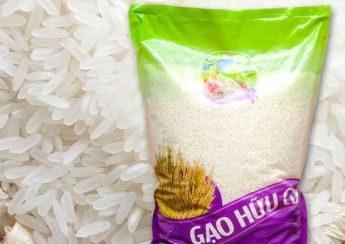 gạo sạch hữu cơ