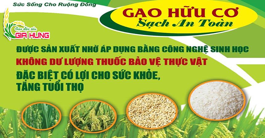 gạo sạch hữu cơ gia hưng