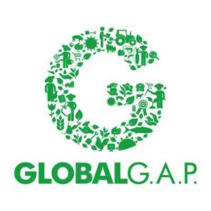 gao chuan global gap