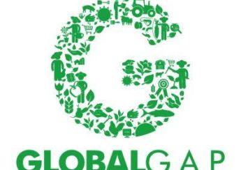 gao chuan global gap